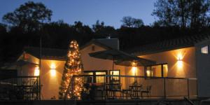 Christmas patio 28 Dec 2013